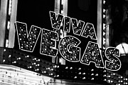 William Shevchuk - Viva Vegas B and W