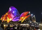Vivid Festival Art - Vivid Sydney Opera House by Sheila Smart