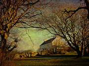 Large House Prints - Voe House Framed By Trees Print by Anne Macdonald