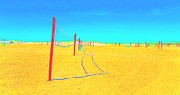 Net Pastels - Volleyball Nets by Dan Hilsenrath