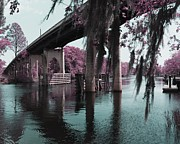 South Carolina Infrared Landscape Framed Prints - Waccamaw River Bridge in April Infrared Framed Print by MM Anderson