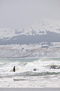 Kodiak Photo Prints - Wading Into Winter Surf Print by Tim Grams