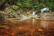 Connecticut Landscapes Prints - Wading Pool Print by Bill  Wakeley