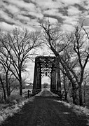 Trees And Bridge Prints - Wadsworrth Bridge Print by Kurt Golgart