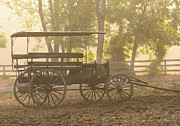 Amish Framed Prints - Wagon - Abes Buggie Framed Print by Mike Savad