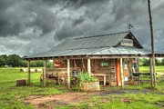 Barn Storm Prints - Wagon at Bush Hog Print by Donna Rainey