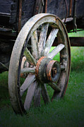Wagon Photos - Wagon Wheel by C E Dyer
