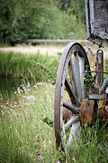 Barn Pen And Ink Posters - Wagon Wheel In Grass Poster by Athena Mckinzie