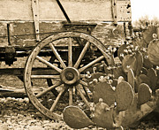 Wagon Wheel Prints - Wagon Wheel In Prickly Pear Print by Robert Frederick