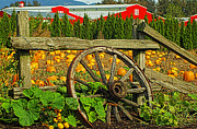 Wagon Wheels Photos - Wagon Wheel in the Pumpkin Patch HDRSC1545-07 by Randy Harris