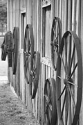 Wagon Wheels Photos - Wagon Wheels by Connie Mueller