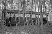 Alienating Prints - Wagons in the forest in infrared light in Netherlands Print by Ronald Jansen