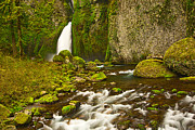 Jamie Pham Metal Prints - Wahclella Falls in the Columbia River Gorge in Oregon. Metal Print by Jamie Pham