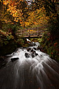 Wahkeena Creek Framed Prints - Wahkeena Slide Framed Print by Steven  Michael
