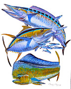 Sailfish Painting Originals - Wahoo Tuna Dolphin by Carey Chen