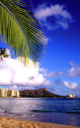 Diamond Head Prints - Waikiki Beach Diamond Head Print by Thomas R Fletcher