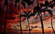 Oranage Prints - Waikiki Sunset Print by David Smith