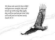 Eagles In Flight Drawings - Wait for the Lord by Janet King