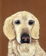 Dog Portrait Pastels - Waiting by Anastasiya Malakhova