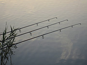 Fishing Rods Metal Prints - Waiting Metal Print by David Pyatt