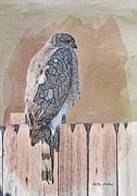 Colored Pencil Metal Prints - Waiting for Mr. Goodbird Metal Print by Betty LaRue