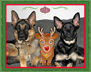 Christmas Dogs Prints - Waiting for Santa Print by Linda Seacord