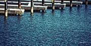 Winter Photos Prints - Waiting for Summer - Boat Slips Print by Mary Machare