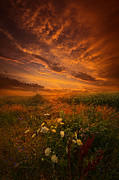 Phil Koch - Waiting for the Day to...