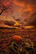 Phil Koch - Waiting for the Great...