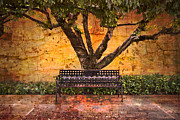 Spring Scenes Metal Prints - Waiting for You Metal Print by Debra and Dave Vanderlaan