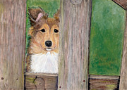 Pup Pastels Framed Prints - Waiting Here For You Framed Print by Barb Kirpluk