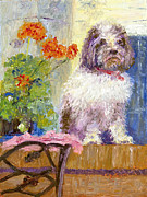 Havanese Paintings - Waiting by Patricia Huff