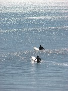 Surf Silhouette Prints - Waiting Print by Peggy Burley