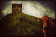 Artography Photos - Waiting Till the Cows Come Home by Jimmy Brown