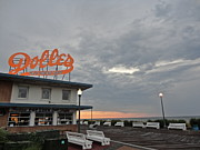 Rehoboth Beach Prints - Waking Print by Photolope Images