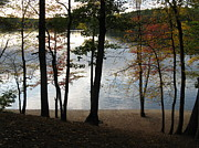 Walden Pond Photo Posters - Walden Pond In Autumn Poster by Sheila Savage