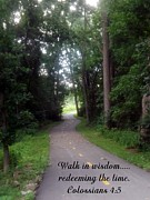 Scripture Prints - Walk in Wisdom Print by Sara  Raber