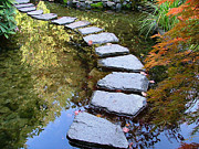 Stepping Stones Prints - Walk On Water Print by Wendy McKennon