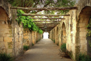 Archways Photo Posters - Walk to the Light Poster by Carol Groenen