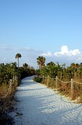 Fort Meyers Photos - Walk Way To Beach by Kathleen Struckle