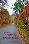 Walk Wisely Print by Larry Bishop