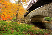 Amazing Jules - Walking Bridge in Fall