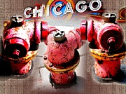 Fire Hydrants Prints - Walking in Chicago Print by Robert D McBain
