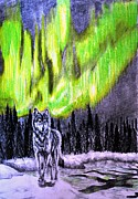 Aurora Drawings - Walking in the Light by Kayla  Thompson