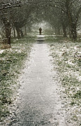 Wintery Digital Art Prints - Walking on the winter path Print by Svetlana Sewell