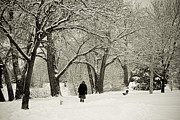 James BO  Insogna - Walking the Dog in a Winter Wonderland