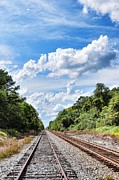 Country Scenes Acrylic Prints - Walking The Tracks Acrylic Print by Jan Amiss Photography