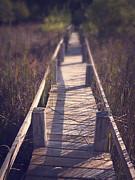 Walkway Through The Reeds Appalachian Trail Print by Edward Fielding