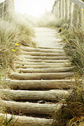 Wooden Stairs Photo Prints - Walkway to beach Print by Les Cunliffe