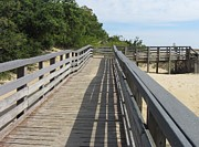 Dunes Photos - Walkway to Jockeys Ridge  by Cathy Lindsey